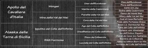 """Cuccioli di boxer Litter """"E"""" delle Terre di Sicilia"""